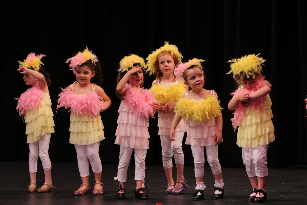 baby-chicks-concert